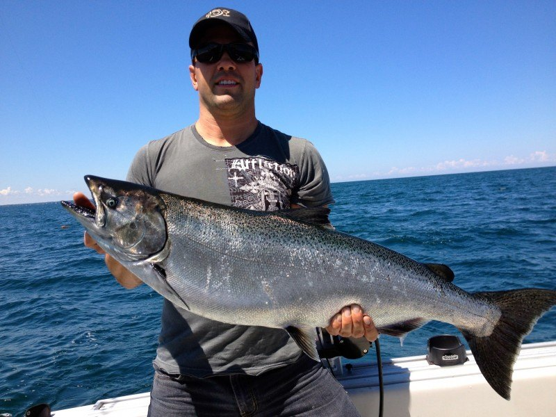 Species tactics jds custom charters lake ontario for Salmon fishing lake ontario